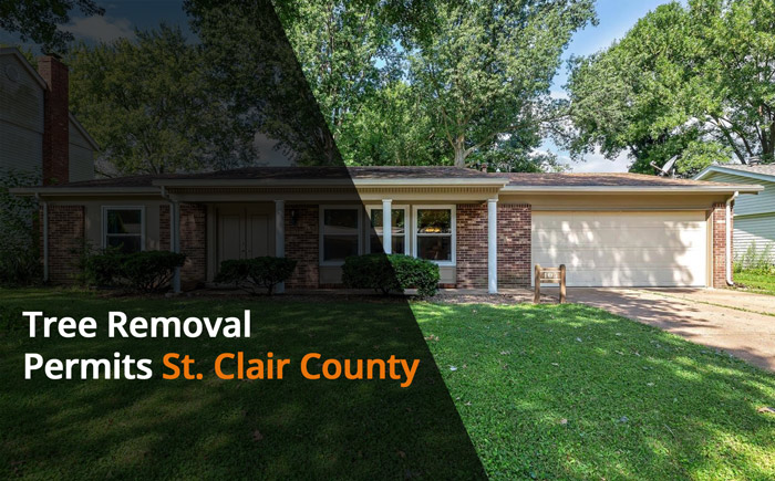 tree removal laws and permits st clair county il