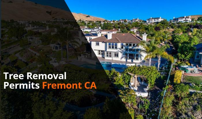 Tree removal permit Fremont CA