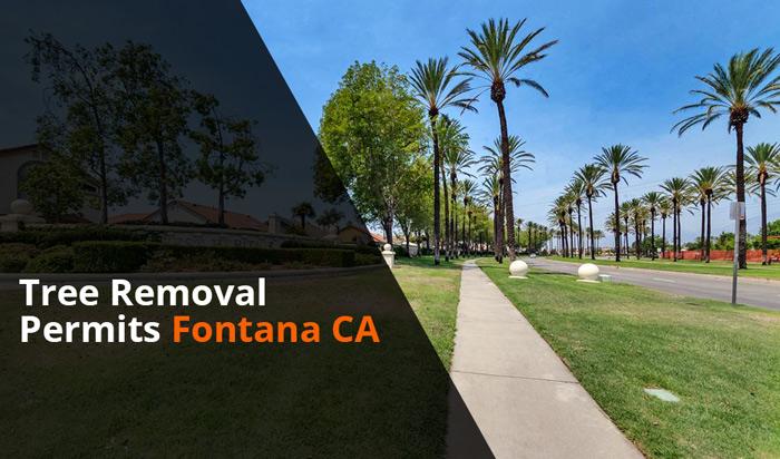 Tree removal permit Fontana CA
