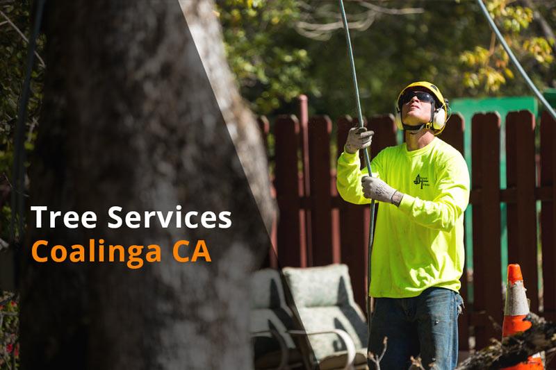tree services coalinga ca