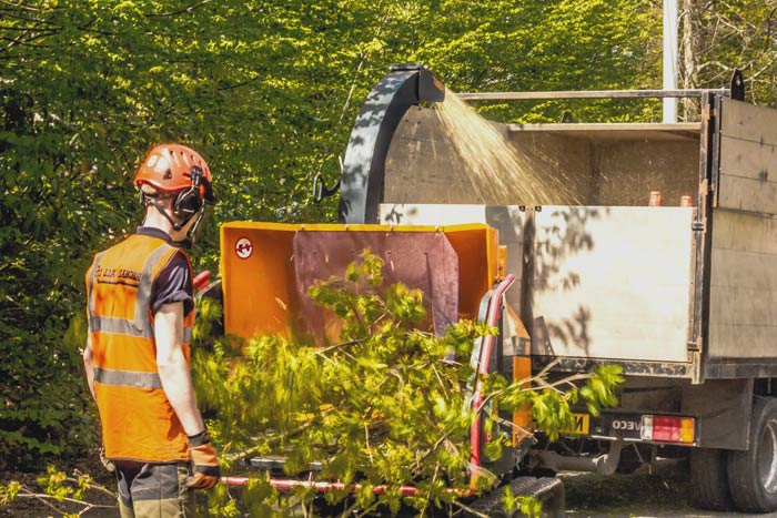 Wood chipping service mulching branches