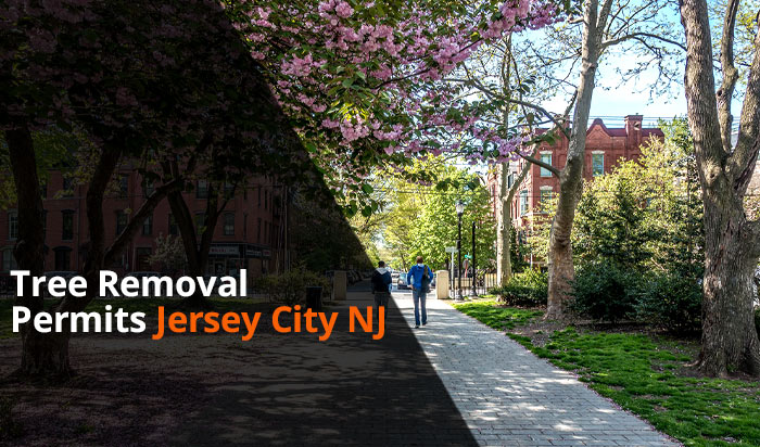 Tree removal permit Jersey v1