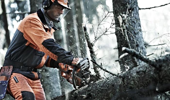 Tree removal permit Jersey v2