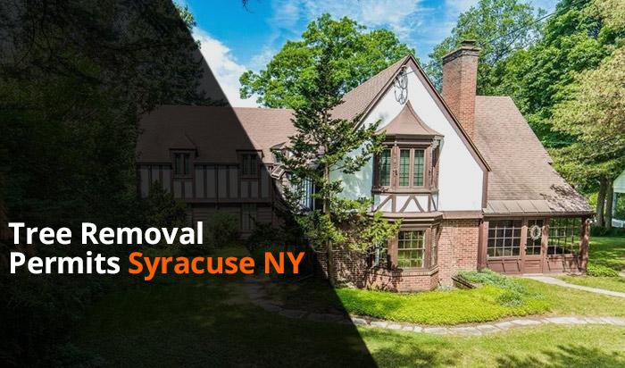 Tree removal permit Syracuse v1