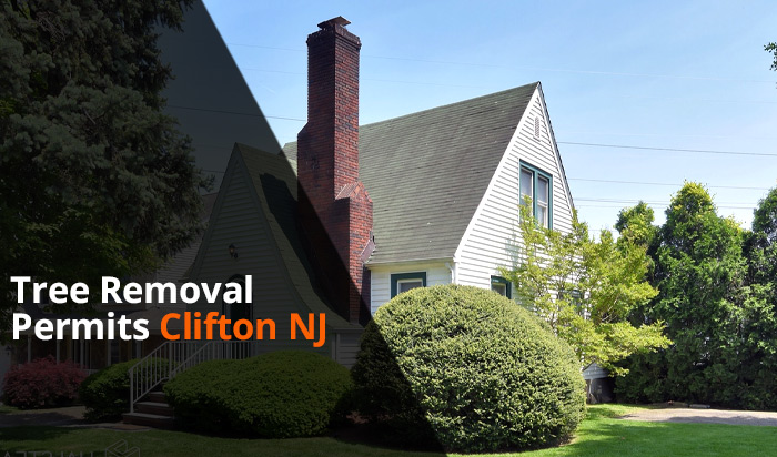 Tree removal permit clifton v1