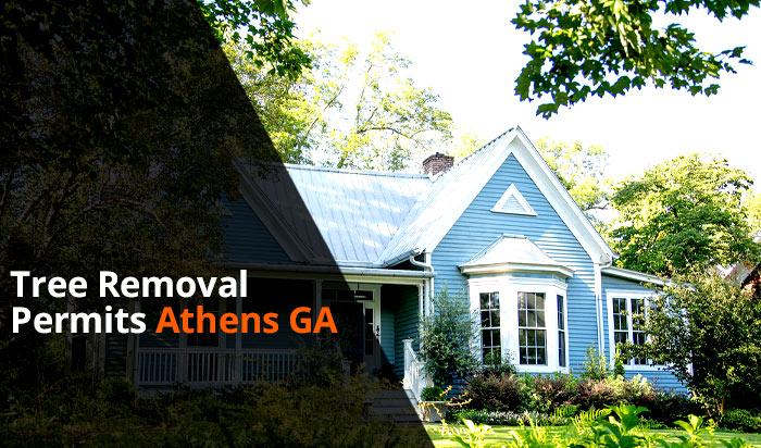 Tree removal permit Athens v1