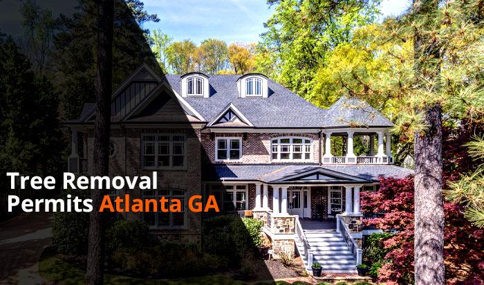 Tree removal permit Atlanta v1