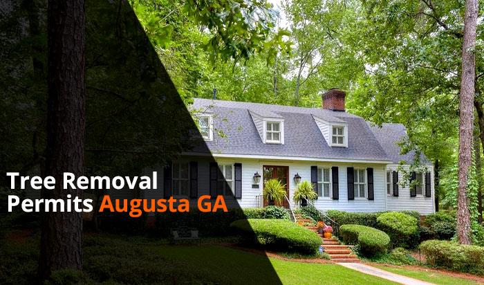 Tree removal permit Augusta v1