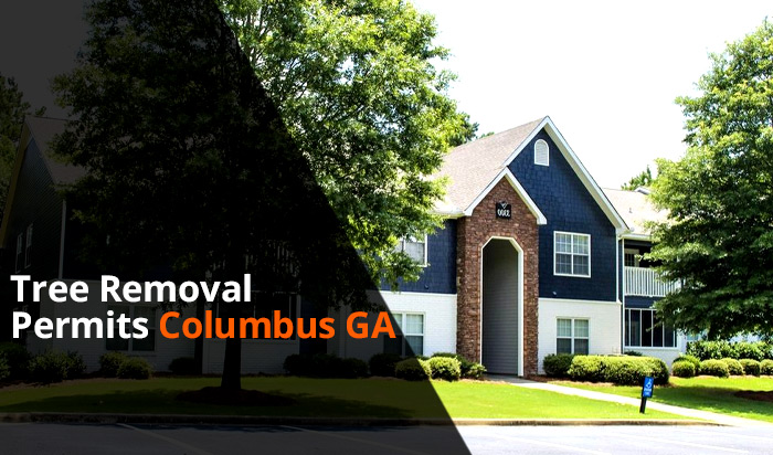 Tree removal permit Columbus v1