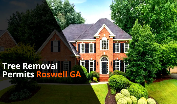 Tree removal permit Roswell v1