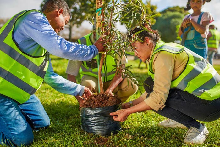 planting trees with locals