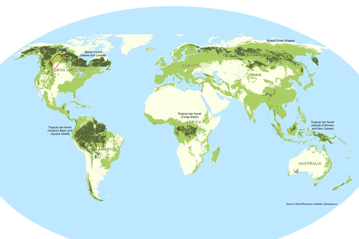 tree distribution worldwide