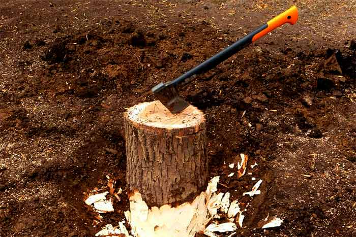 How to save on tree and stump removal remove trump by yourself
