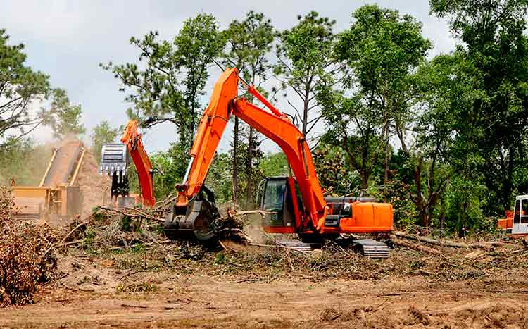 How much does professional land clearing services cost tractors