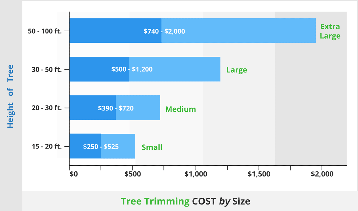 average tree trimming price by height1200x710