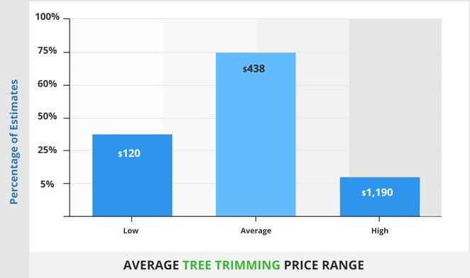 average tree trimming price range662x
