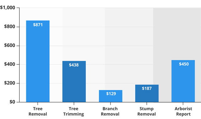 Average Tree Cutting Services prices table infographic642