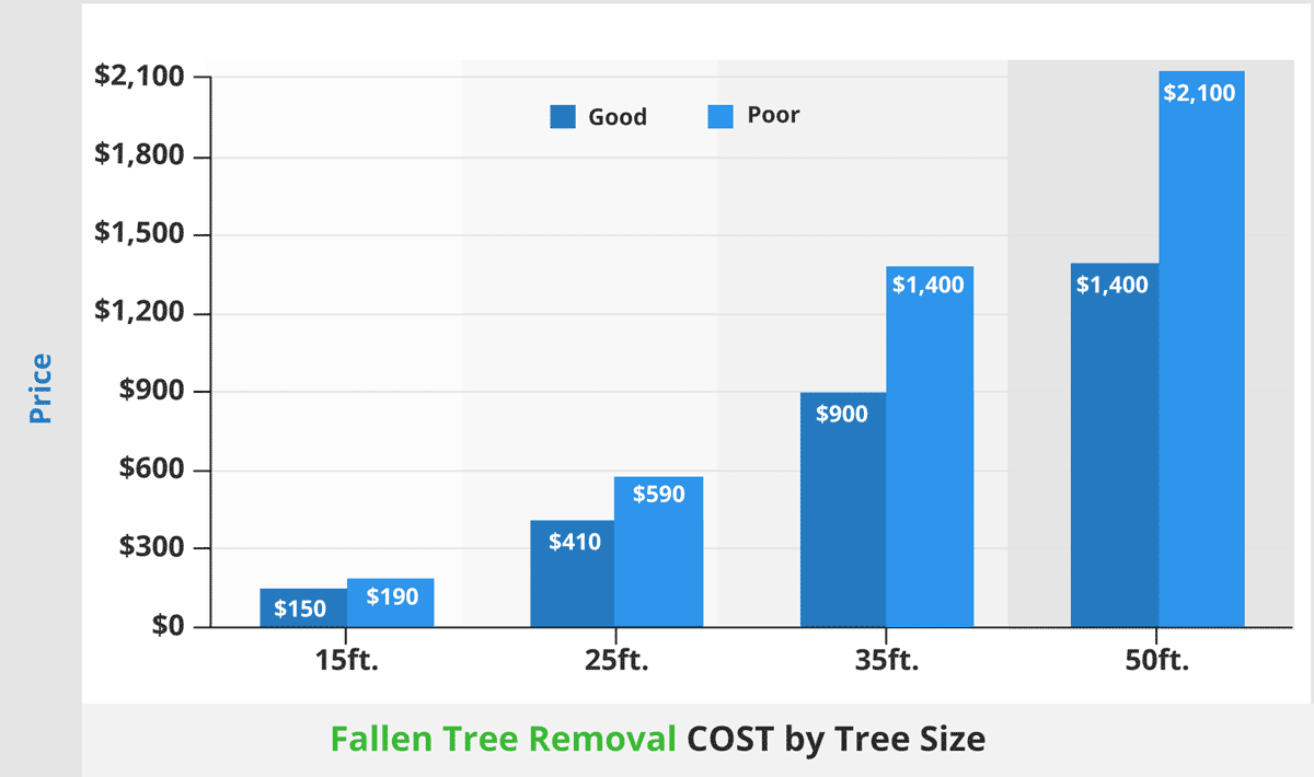 Fallen tree removal cost by tree size1200