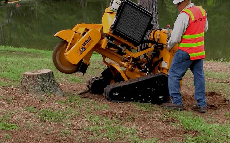 Finding a good stump grinding service professional