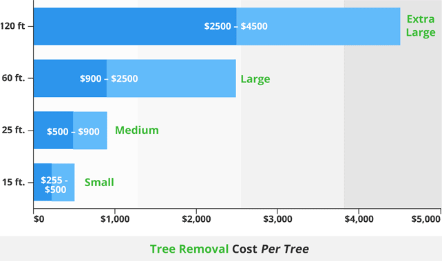 Tree Removal Cost Per Tree642 new1