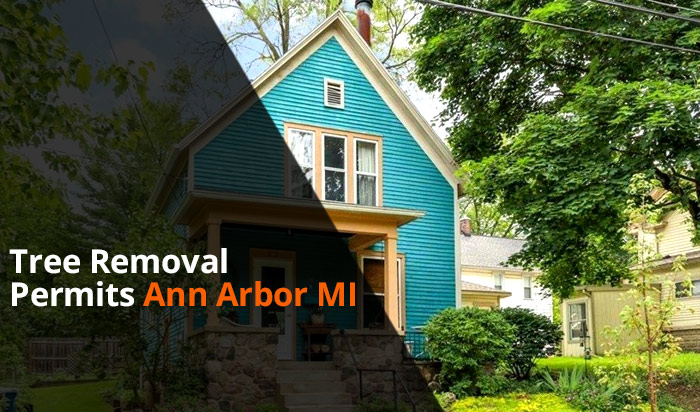 Tree removal permit Ann Arbor v1