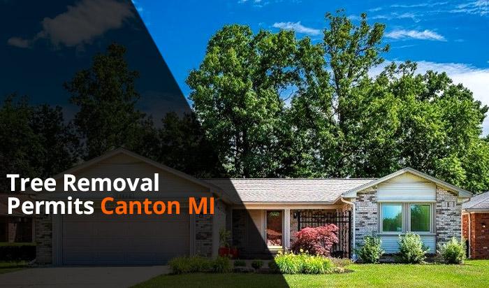 Tree removal permit Canton v1