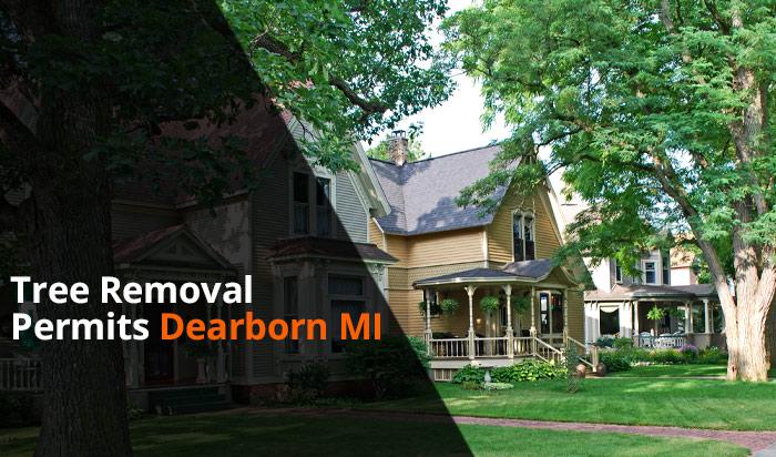 Tree removal permit Dearborn v1