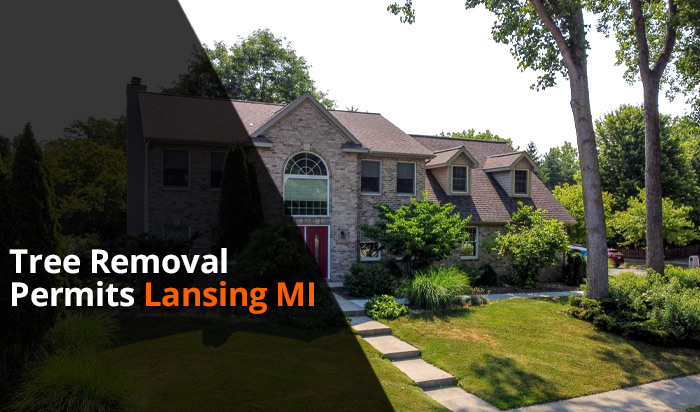 Tree removal permit Lansing v1