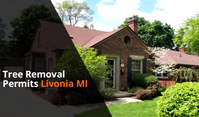 Tree removal permit Livonia v1