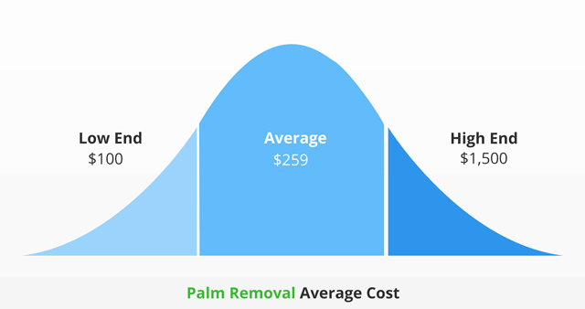 palm tree removal average cost infographic