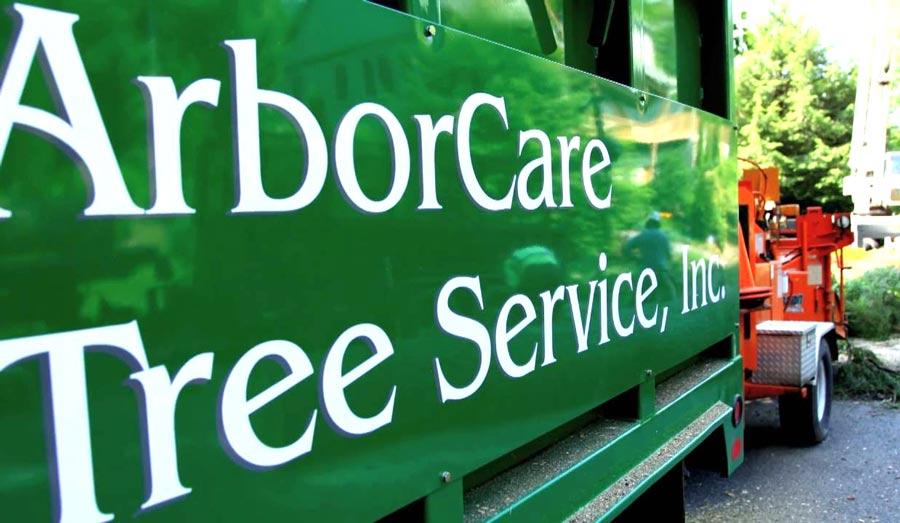 Tree Care Service Near Me