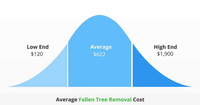 average fallen tree removal cost infographic