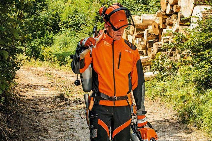 safety gear required for tree removal